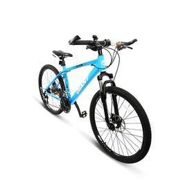 梦幻定制版捷安特21速山地自行车