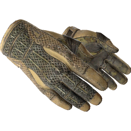 运动手套(★) | 干旱